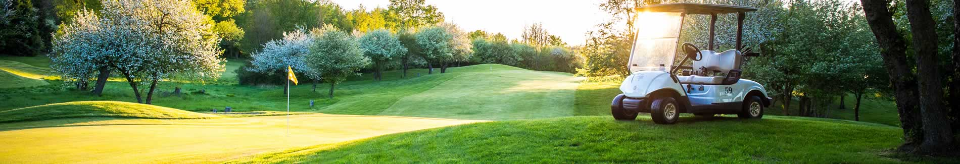 golf packages michigan